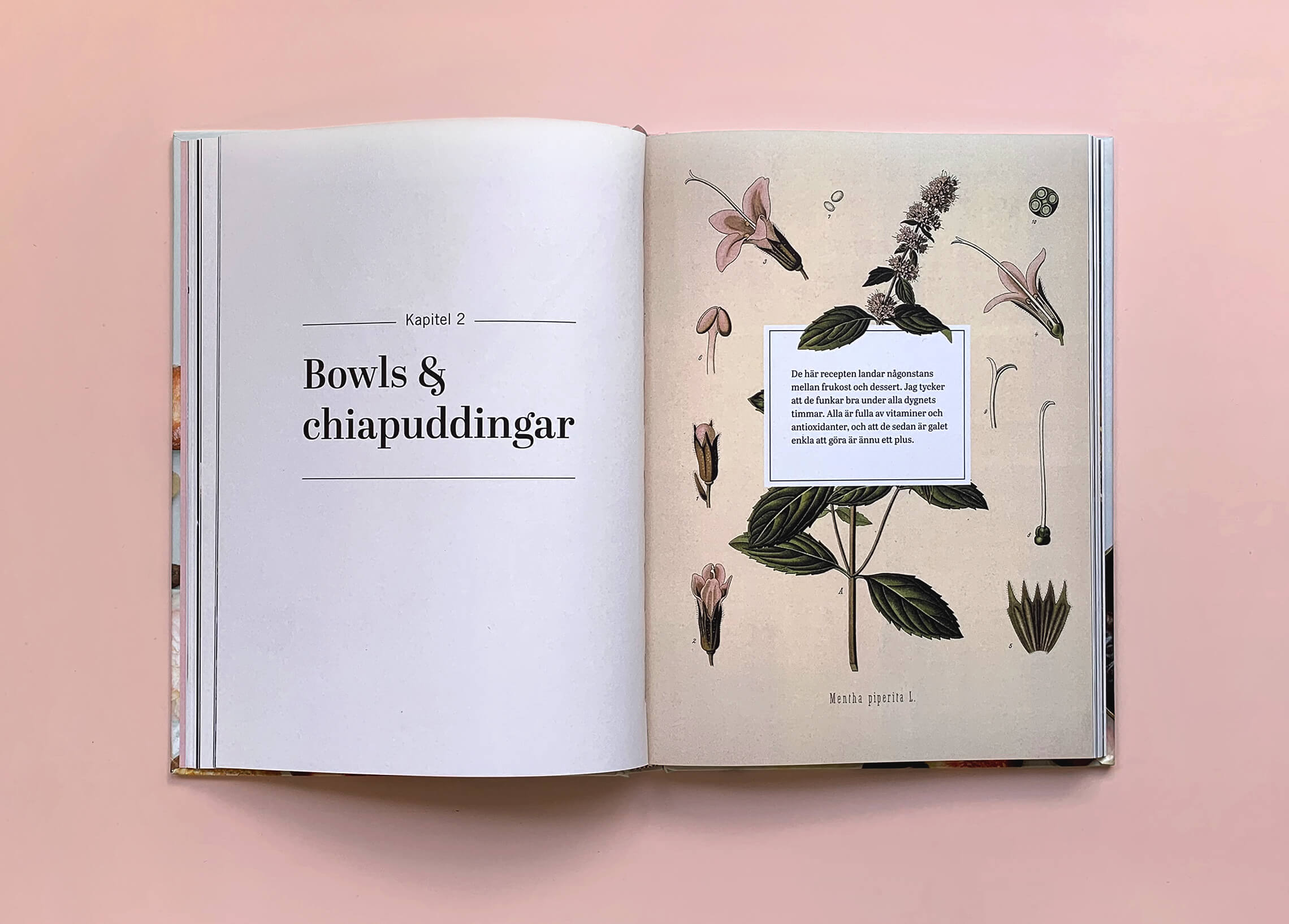 """Uppslag med kapitelstart med titeln """"Bowls och chiapuddingar"""" i boken """"Superfood – desserter och drycker"""""""